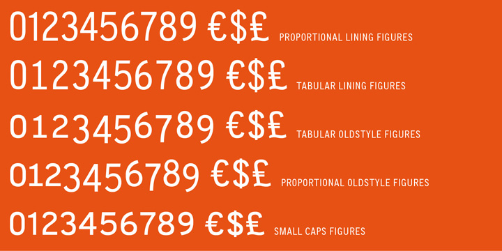 CA Normal font family - 6