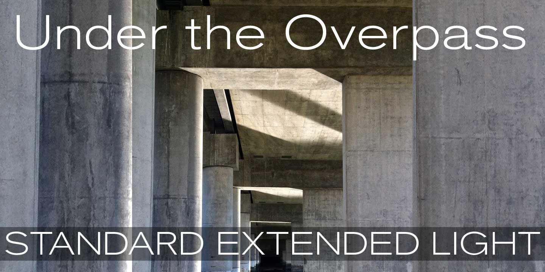 standard ct ext medium free font download