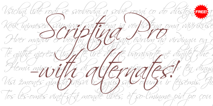 scriptina pro font by cheapprofonts  u2022 fontspring