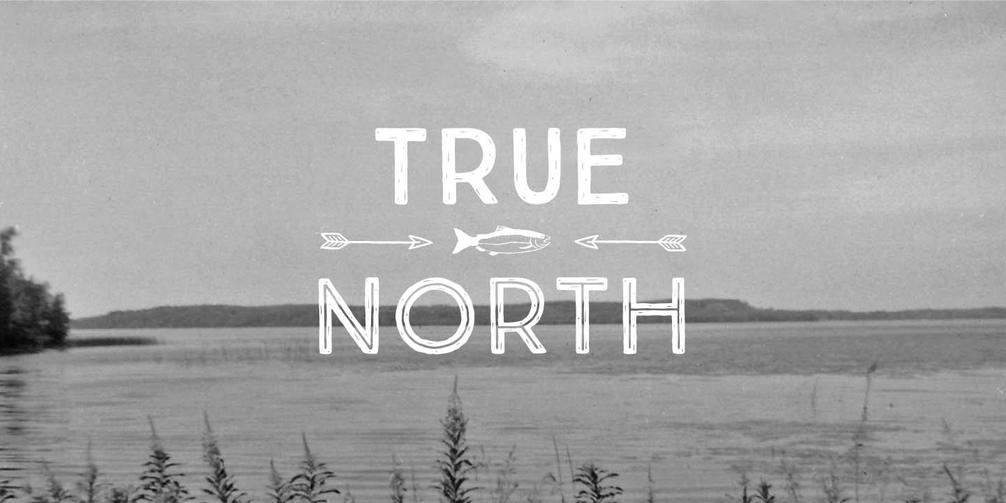 true north Reach for truenorth ® brand nut clusters for a satisfying, delicious way to  experience the goodness of nuts gluten free snacks that taste good.