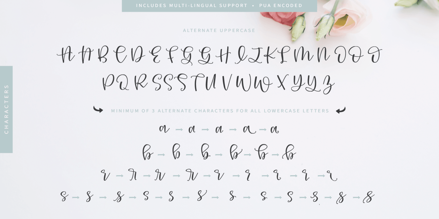 Fontspring | Roseroot Cottage Font Collection Fonts by Emily
