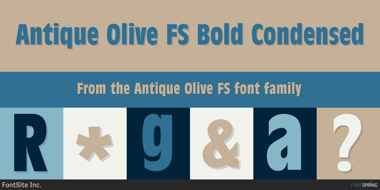 Fontspring   Antique Olive FS Fonts by FontSite Inc
