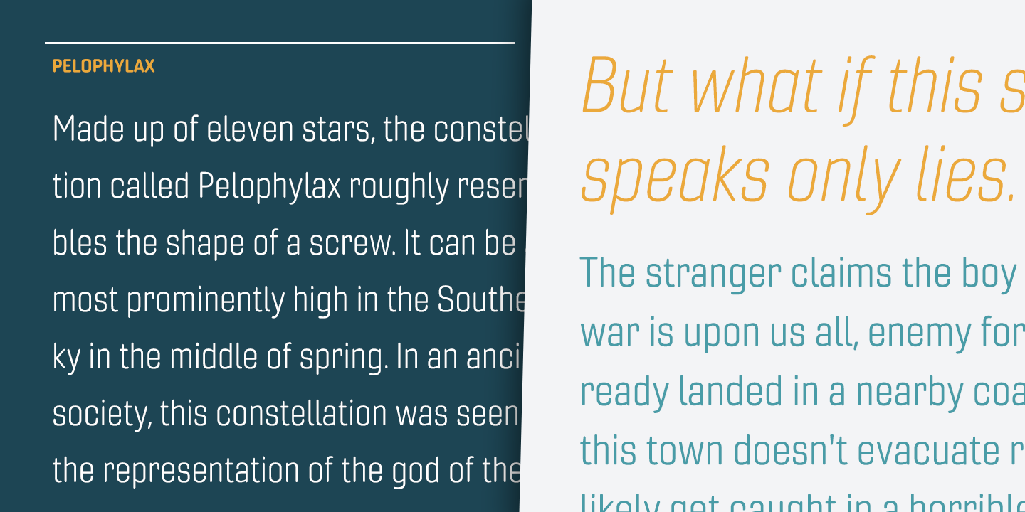 Fontspring | Gineso Soft Fonts by Insigne Design