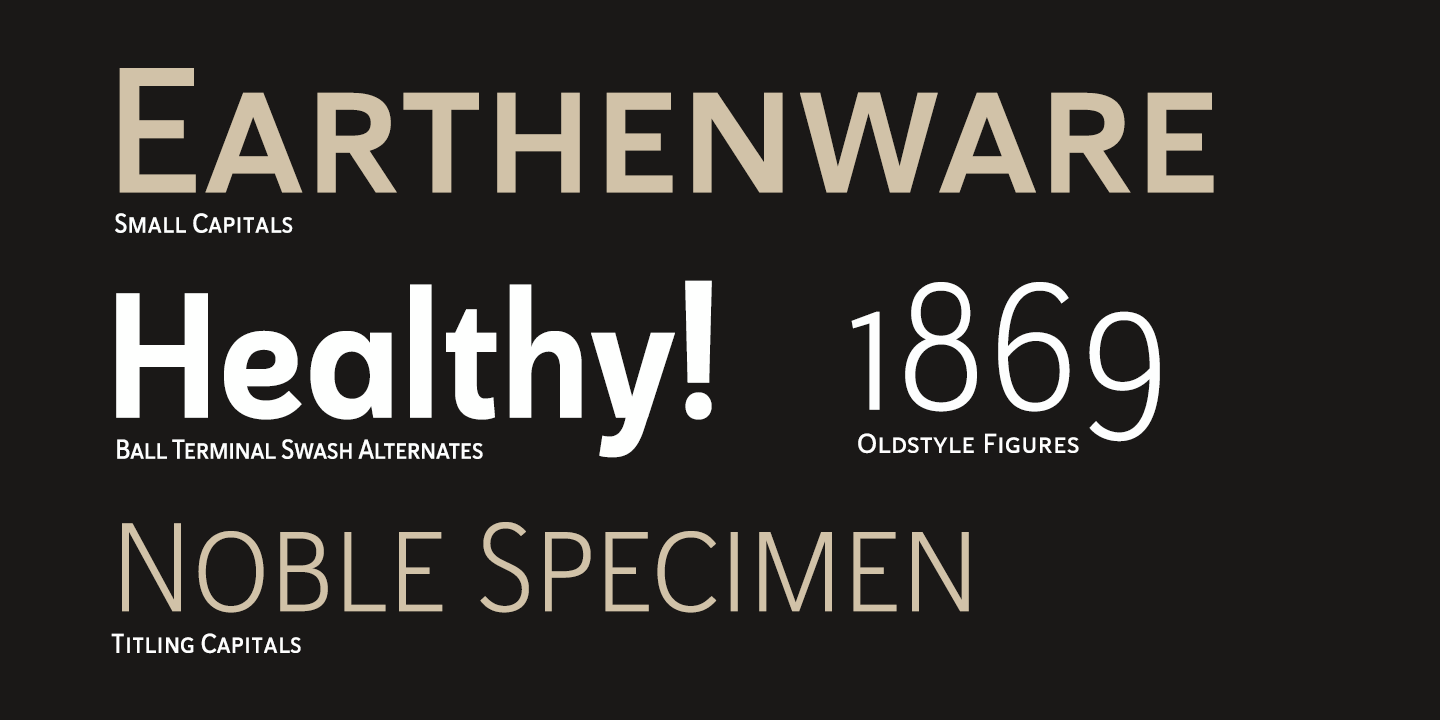 Fontspring   Haboro Sans Fonts by Insigne Design
