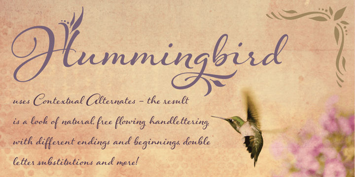 Fontspring | Hummingbird Fonts by Laura Worthington