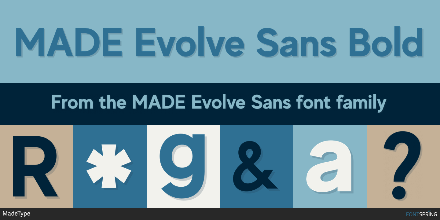 Made Evolve Sans - Resume Examples | Resume Template
