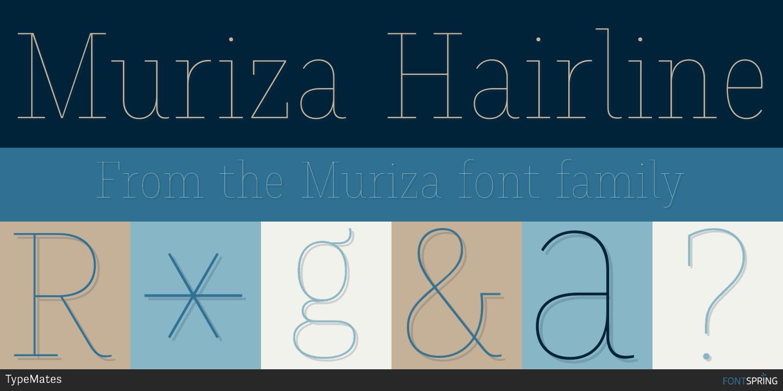 Fontspring | Similar Fonts To Muriza