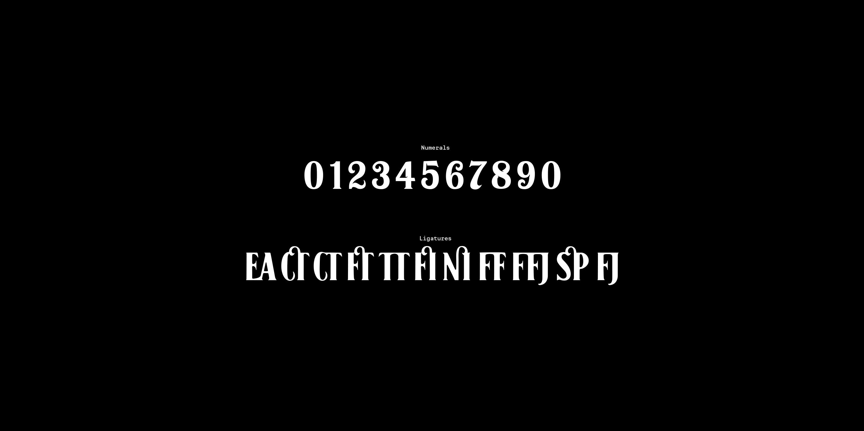 Fontspring   Black No  7 Fonts by Typocalypse