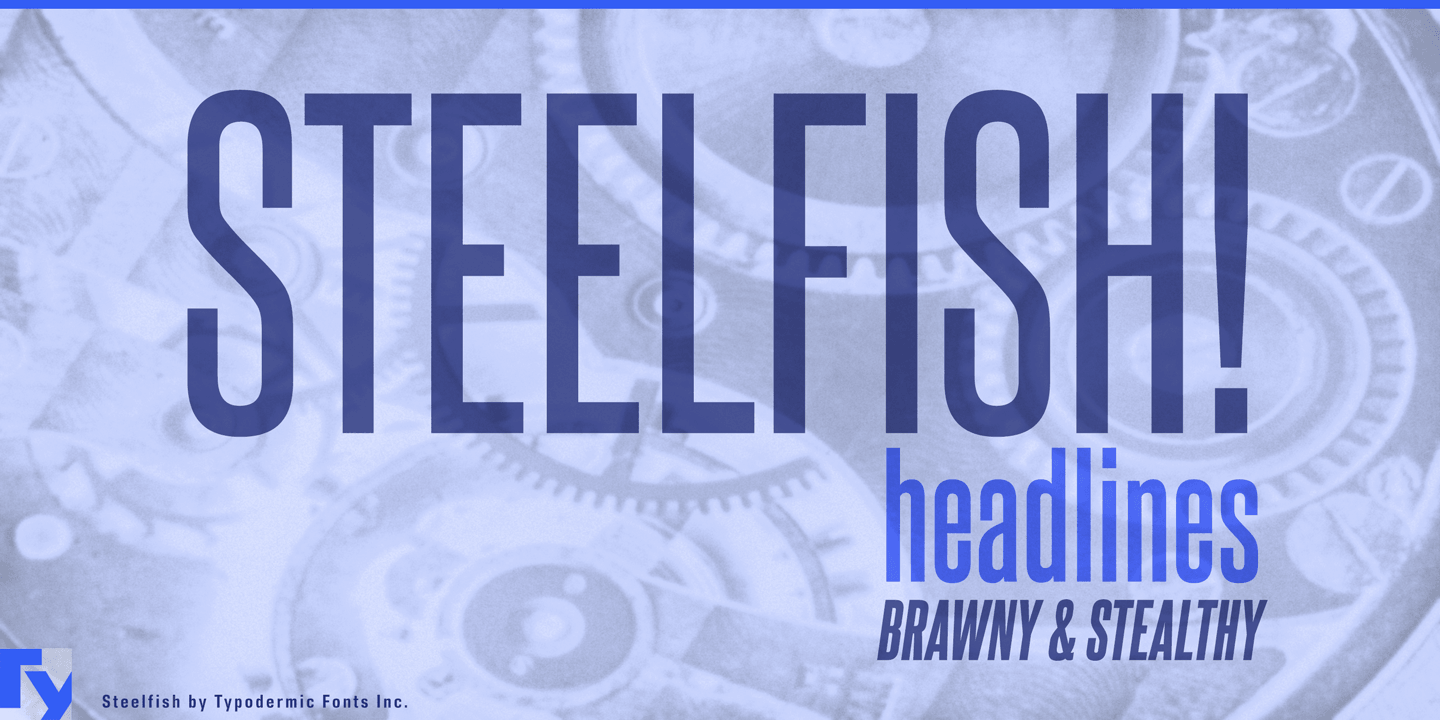 Fontspring | Steelfish Fonts by Typodermic Fonts Inc