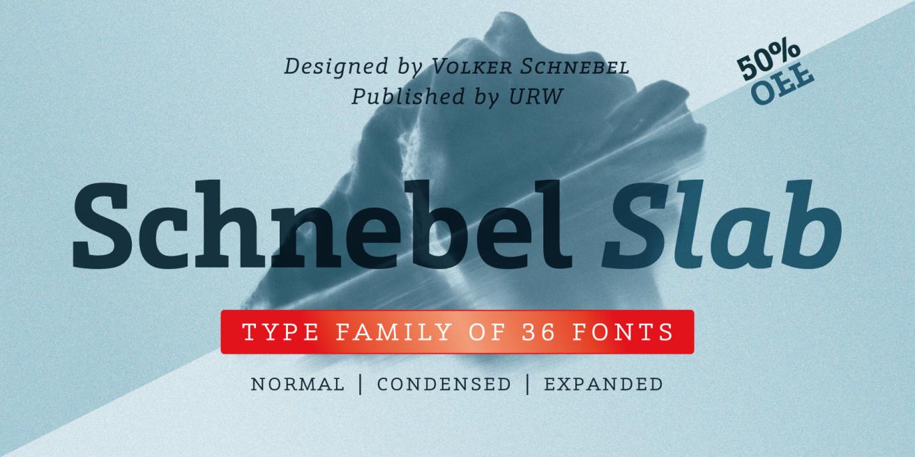 Schnebel Slab Pro Poster
