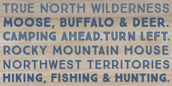 True North Poster2