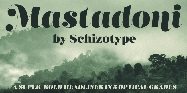 Schizotype Fonts Flash Sale - 57% off for only one more day! Poster2
